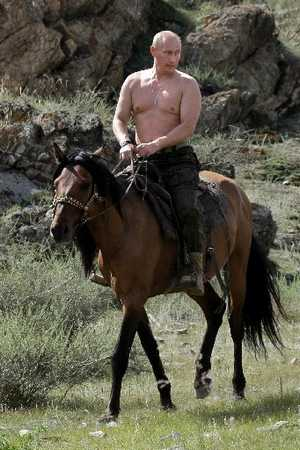 What are you thinking? - Page 2 Putin-horse
